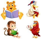 Four animals reading Royalty Free Stock Photos