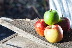 Four apple on wooden board Royalty Free Stock Images