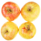 Four apples Royalty Free Stock Photo