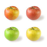 Four apples. (variations of color), isolated on white Stock Image