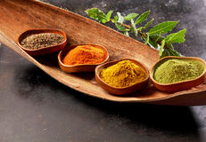 Four assorted spices in rustic bowls Stock Images