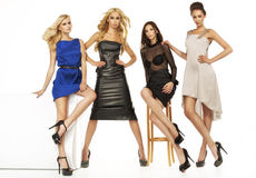 Four attractive female models together royalty free stock images