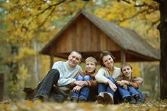 four in autumn forest Royalty Free Stock Image