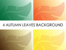Four autumn leaves background Stock Photo
