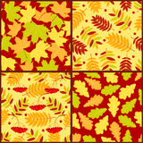 Four autumn seamless patterns. Vector color backgrounds Stock Image