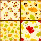 Four autumn seamless patterns. Vector color backgrounds Stock Images