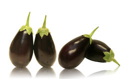 Four Baby Aubergine Eggplants. Four eggplants reflection on white Royalty Free Stock Photography