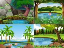 Four background scenes of forest Stock Photos