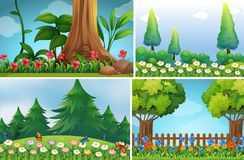 Four background scenes of garden Royalty Free Stock Images