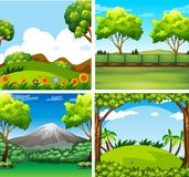 Four background scenes with trees and field. Illustration Stock Images