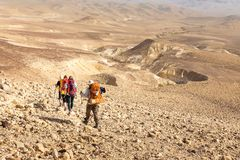 Four backpackers hiking trail, Negev desert, Israel. Four backpackers friends tourists hiking walking descending arid mountains trail footpath rear view, Negev royalty free stock images