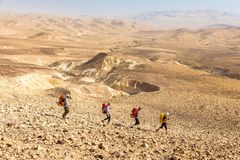 Four backpackers hiking trail, Negev desert, Israel. Four backpackers friends tourists hiking walking descending arid mountains trail footpath, Negev stone royalty free stock photo