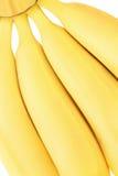 Four banana. Four fresh banana close up Stock Image