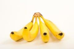 Four banana Stock Photography