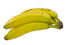 Four Bananas Stock Images
