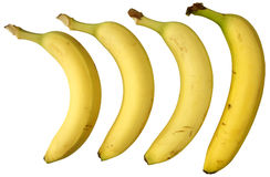 Four bananas. Royalty Free Stock Image