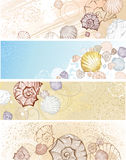 Four banner with seashells. Four horizontal banner with beautiful stylized seashells Royalty Free Stock Photography
