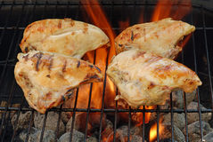 Four barbecue chicken breasts Stock Images