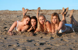 Four beautiful bikini models royalty free stock image