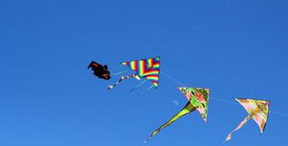 Four beautiful kites flying in the sky Stock Images