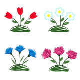 Four beds with flowers Royalty Free Stock Image