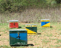 Four Bee Hives Stock Images