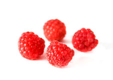 Four berries ripe raspberry on white background Royalty Free Stock Photography
