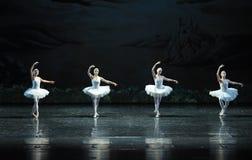 Four big Swan-The Swan Lakeside-ballet Swan Lake Stock Photography
