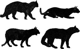 Four black isolated cats collection Royalty Free Stock Image