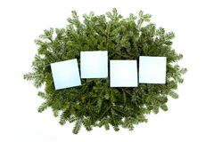 Four blank notes over pine tree twigs. stock images