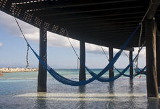 Four Blue Hammocks Hanging From Seaside Shelter Stock Photos