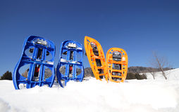 Four blue and orange snowshoes Royalty Free Stock Photo
