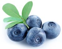 Four blueberries. Royalty Free Stock Photo