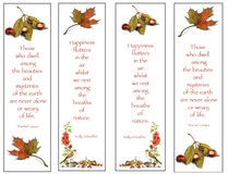Four Bookmarks: Nature Drawings With Quotes. Four bookmarks created with my nature illustrations as well quotes about the beauty of nature Royalty Free Stock Images