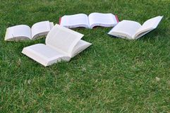 Four books on grass Stock Photography