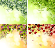 Four border designs Stock Photography