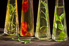 Four bottles with vegetable oil and fresh spices Royalty Free Stock Image