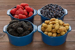 Four bowls with berries Stock Image