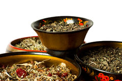 Four bowls of tea brewing Royalty Free Stock Photo