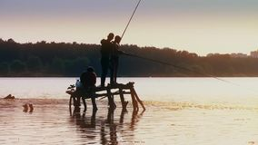 Four boys fisherman fishing fish on wooden pier in lake at sunset forest on background new unique quality joyful people stock footage