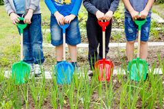 Four boys playing with plastic shovels in the garden. At summer day royalty free stock photo