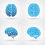 Four brain icons. Set of four blue brain icons. Top and side view royalty free illustration