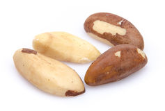 Four Brazil nuts Stock Images