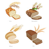 Four breads with slices and cereal ears. Part one Stock Image
