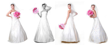 Four brides Royalty Free Stock Photos