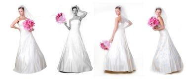 Four Brides Royalty Free Stock Photos