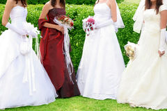 Four brides in wedding dress Stock Photos