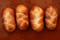 Four brioche pastries over orange clay Stock Photography