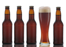 Four Brown Beer Bottles and Full Glass Royalty Free Stock Photo