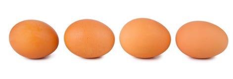 Four brown eggs Stock Photo